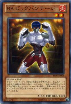 BK ビッグバンテージ ノーマル PRIO-JP008 炎属性 レベル2【遊戯王カード】枠スレ