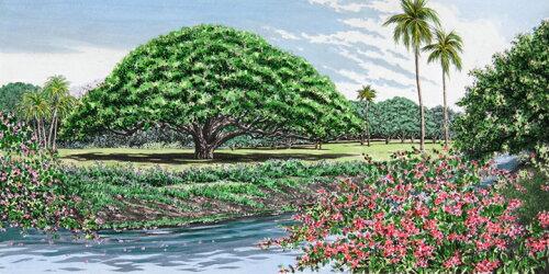 キャロル・コレット 「Moanalua Gardens II」Collette 手彩色銅版画選べる新品額付 国内 送料無料