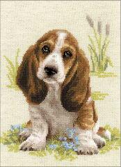 クロスステッチ 刺繍キット RIOLIS バセットハウンドの子犬 Basset Hound Puppy 見やすい大きめステッチ(1センチに4目)[グレイスワーク]