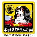 ペットちょい悪ステッカー【大判マグネットタイプキャバリア黒】愛犬を連れてノリノリで、ドライブにおでかけ〜♪