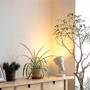 照明 ライト 1灯 テーブルライト おしゃれ 照明器具 天井照明 北欧 ハンギング 和室 和風 カフェ 階段 トイレ 玄関 寝室 モダン ダイニング用 インテリ