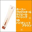 ホーユー hoyu プロマスターG クリエールベーシック VB バイオレットブラウン 80g カラー剤/1剤/1液/業務用/おしゃれ染め/白髪染め