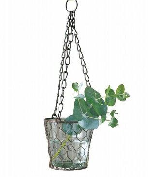 ハンギングワイヤー フラワーベース 花瓶 ガラス/吊り下げ/ハンキング/おしゃれ/インテリア/ガーデニング/かわいい/壁掛け/雑貨 DYDZ105030