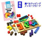カタミノ(Katamino)ギガミックGigamic知育玩具ボードゲーム