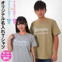 ディズニー WALT DISNEY をイメージした可愛い書体で作る 【Tシャツ 名入れ】 オンリーワンのオーダーTシャツ 1枚からご注文できます オリジナルTシャツ ギフト対応 [TS-105]