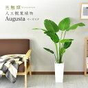 観葉植物 光触媒 スプリットフィロ 高さ53cm インテリア 玄関 造花 人工観葉植物