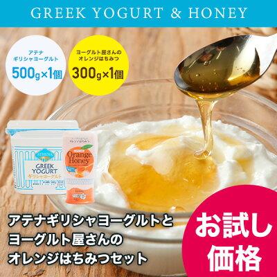 アテナのギリシャヨーグルト,ヨーグルト屋さんのオレンジはちみつのお試しセット(各1個)