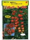 ミニトマト種 ダイヤ交配 チェリーゴールド トキタ種苗のミニトマト品種です。 種のことならお任せグリーンデポ