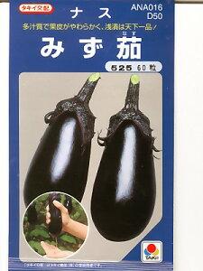 ナス タキイ交配・・・みず茄・・・<タキイの水ナスです。種のことならお任せグリーンデポ>