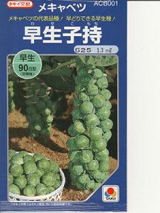 沢山収穫できる作りやすいメキャベツ品種です。キャベツ タキイ交配・・・早生子持・・・<タ...