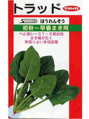 ほうれん草種 サカタ交配 トラッド  サカタのタネのほうれん草品種です。 種のことならお任せグリーンデポ