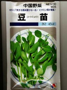 中国野菜 タキイ・・・豆苗・・・タキイの中国野菜です。 種のことならお任せグリーンデポ