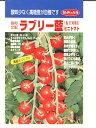 ミニトマト種ラブリー藍みかど協和のミニトマトの品種です。種のことならお任せグリーンデポ