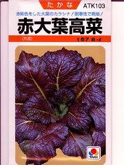 高菜 タキイ 赤大葉高菜 <タキイの高菜です。種のことならお任せグリーンデポ>