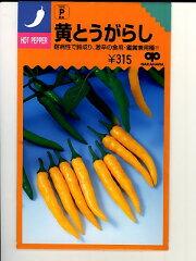 黄とうがらし <中原採種場のとうがらし種子です。種の通販ならグリーンデポ>