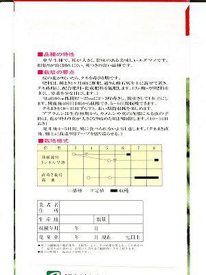 エダマメ種 おすすめ枝豆 横浜植木の枝豆種子です。種のことならグリーンデポ