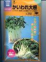 スプラウト種 かいわれ大根   中原採種場のスプラウト用種子です。