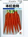 ニンジン種子 本紅金時にんじん   タキイ種苗の伝統野菜人参種です。