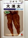 ゴボウ種 大浦太ゴボウ    タキイの大浦ゴボウ種子です。