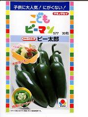 こどもピーマン タキイ交配ピー太郎   タキイ種苗のこどもピーマンの種です。