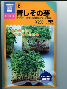 スプラウト種子  青しその芽 <中原採種場の青しその芽の種です。>