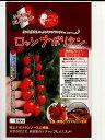 ロッソナポリタンパイオニアエコサイエンス(100粒)のミニトマト種子です