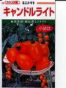 ミニトマト種カネコ交配キャンドルライト