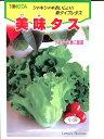 苦味が少なく美味しいレタス美味タス   トキタ種苗のレタス種です。野菜種の通販ならグリー...