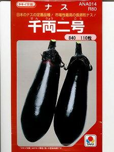 定番のナス品種ナスの種 タキイ交配 千両二号なす  タキイの茄の品種です。種の通販ならグ...