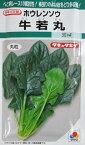 タキイ交配 牛若丸ほうれん草  タキイ種苗のほうれん草品種です。