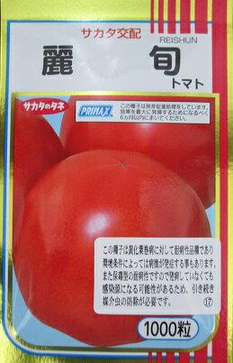 サカタ交配 麗旬トマト    サカタのタネの黄化葉巻病耐病性の大玉トマト品種:GREEN DEPOT