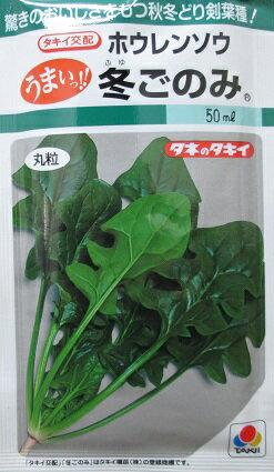 タキイ交配 冬ごのみホウレンソウ タキイ種苗のほうれん草品種です。