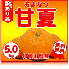 ノーワックス・防腐剤不使用、果樹が病気にならないための最低限の農薬しか使っていません。ジ...