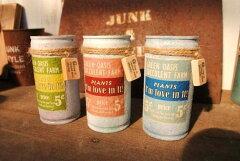 【多肉植物】【ミニ観葉】アンティークなハンドメイドブリキ缶!インテリアやギフトに最適!オ...