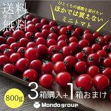 【トマト嫌いだから作れる・高糖度トマト】収穫後8時間以内に出荷ミニルック約800g 産地直送東北・関東・信越地域は【送料無料】※ご注文受付順発送となります