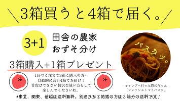 【トマト嫌いだから作れる・高糖度トマト】収穫後8時間以内に出荷ミニルック1kg産地直送東北・関東【送料無料】