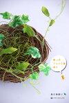 NEW鳥の巣型のバスケットLサイズ【造花】【観葉植物】【インテリアグリーン】【フェイクグリーン】【人工観葉植物】【鳥の巣】【光触媒消臭】【北欧インテリア】【北欧雑貨】【イミテーショングリーン】