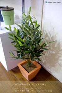 オリーブの小鉢高さ約60cmナチュラル感を大切にフェイクグリーン&インテリアグリーンと造花の...