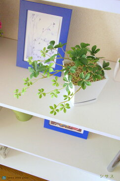 シサス樹脂鉢付フェイクグリーン人工観葉植物人工樹木雑貨北欧雑貨光触媒付インテリアグリーン