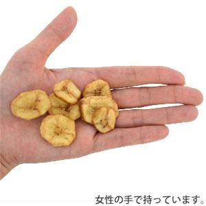 【その他厳選】ヤミー ベグ バナナチップ 25g| おやつ 犬 犬用