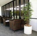 【屋外にも対応】人工観葉植物・ミニフィカス・ベンジャミン・全高1.2m...