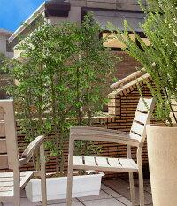 屋外用ミニ・フィカスベンジャミンB・パーテーション全高1.5m(野外対応)(間仕切りタイプ)(フェイクグリーン/造花・観葉植物/人工樹木)