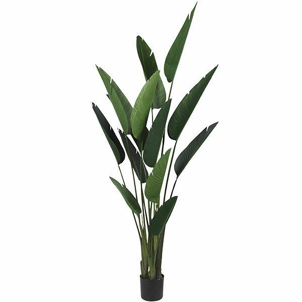人工観葉植物 全高1.8mストレリチア オーガスタ トラベラーズパーム パームツリー 人工樹木 造花 花材 リーフ インテリアグリーン フェイクグリーン トロピカルグリーン オブジェ ディスプレイ ディスプレー 装飾