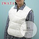 Iwata_lv_c1t