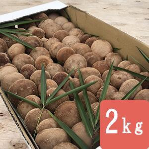 【産地直送販売】無農薬菌床生しいたけ2kg
