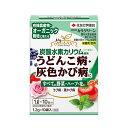カリグリーン 殺菌剤 1.2g×10袋 住友化学 住友化学園芸 (efgl01)