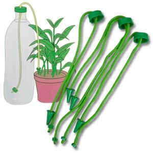 レビュー記入で粗品進呈♪ 出張・旅行中で留守の時も安心!鉢植植木・観葉植物の簡易給水装置...