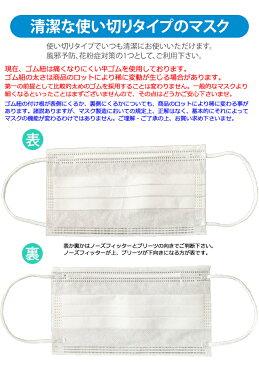 【4/27〜順次発送】マスク 在庫あり GPT 使い捨てマスク3 不織布【 100枚 】白色 3層構造 不織布マスク 在庫あり ますく 送料無料 箱 50枚入×2 輸入品 中国製(gu1a655)【セット】