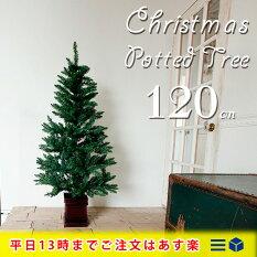 クリスマスポットツリー120cm