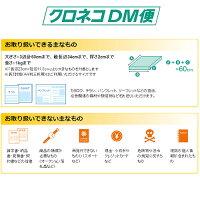 dm便説明1